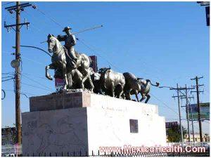 imgp0204-jpg-hip-replacement-in-ciudad-juarez