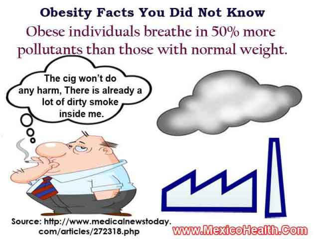Obesity Facts - Air Pollution